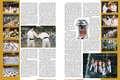p.28-29: International Camp Mitsumine 2003 - Report